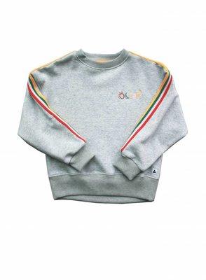 Ammehoela sweater grijs